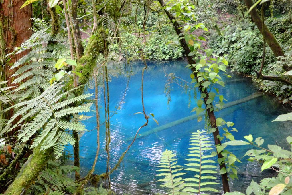 Kristallklarer Urwaldsee