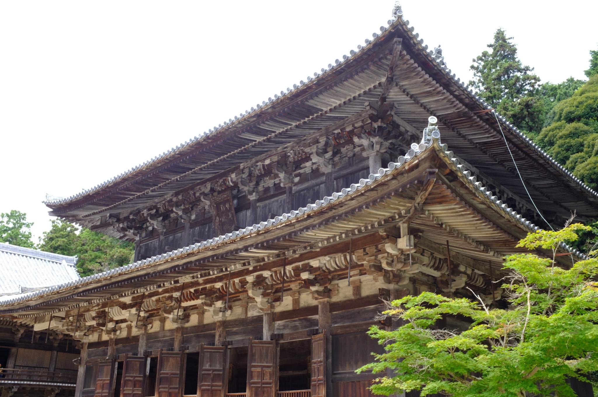 Sosha Tempel