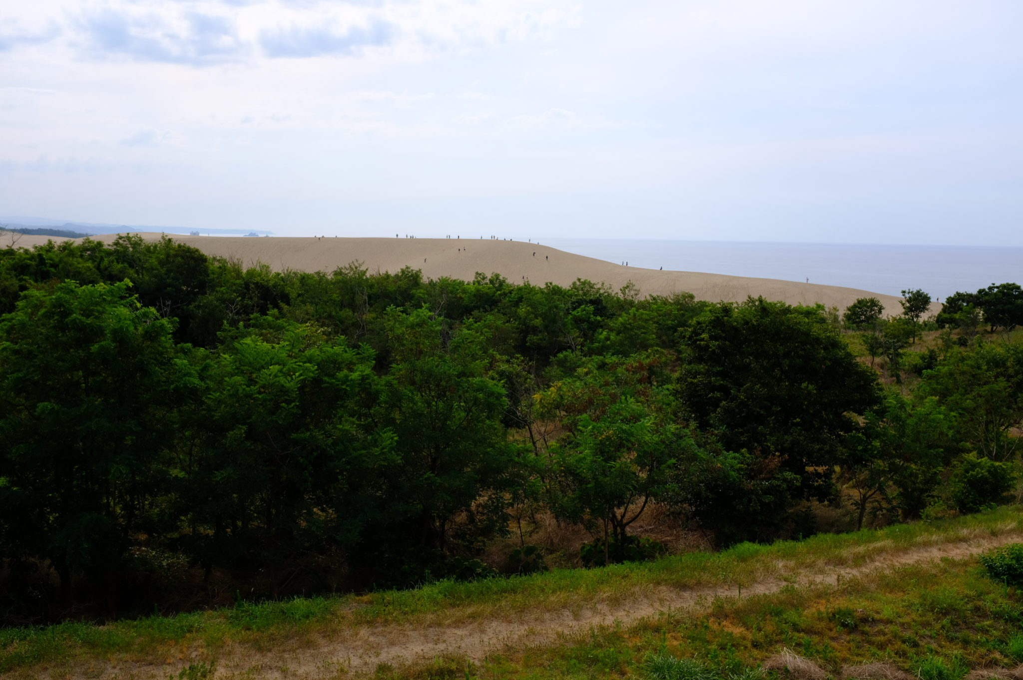 Die Sanddünen von Tottori