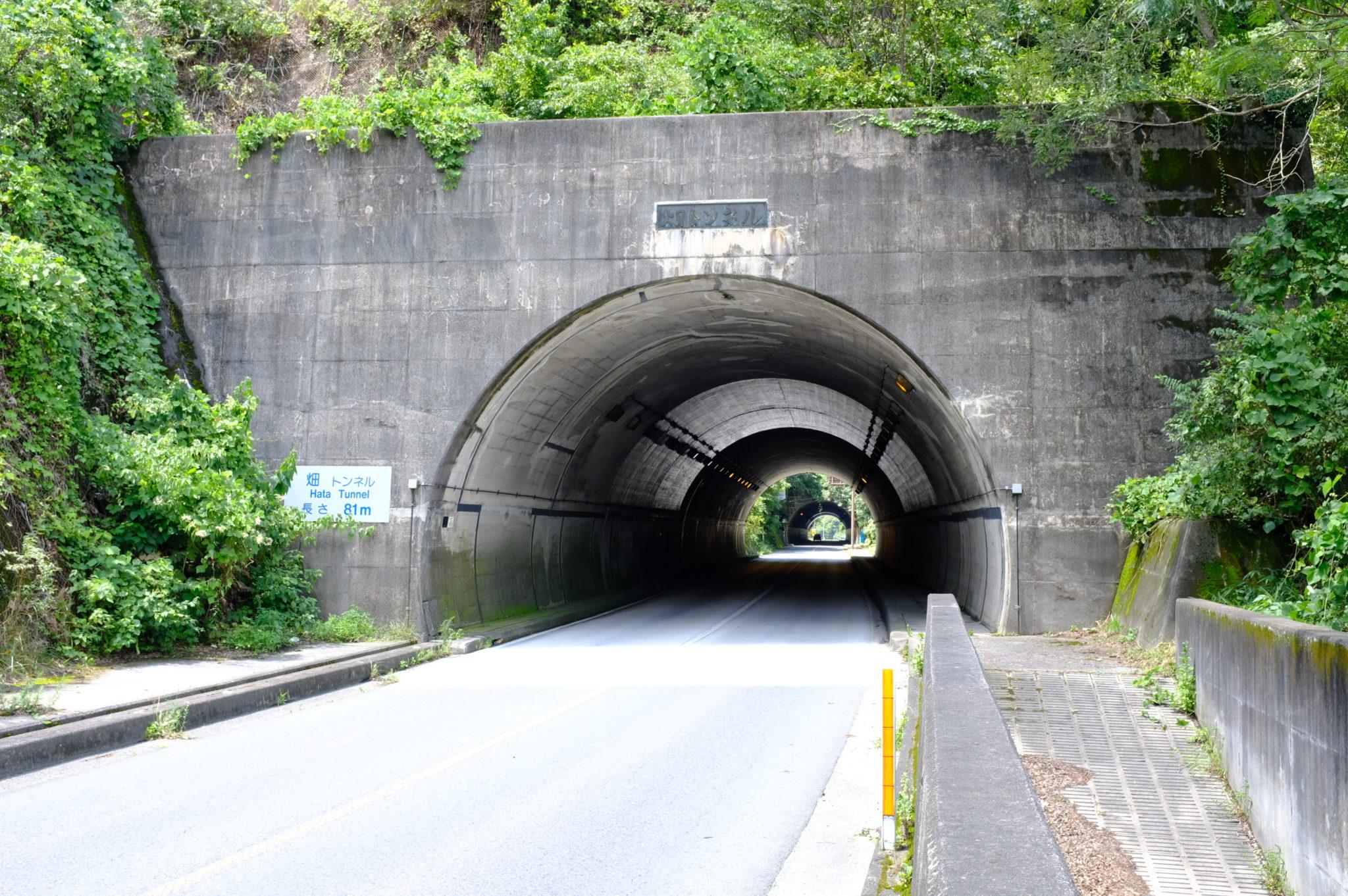Eine Menge Tunnels